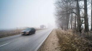 Noc i poranek pod znakiem gęstych mgieł. Żółte alerty w części kraju