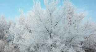 Zimowe scenerie z Chin